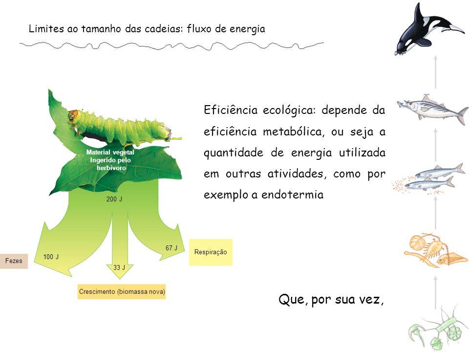 Crescimento (biomassa nova)