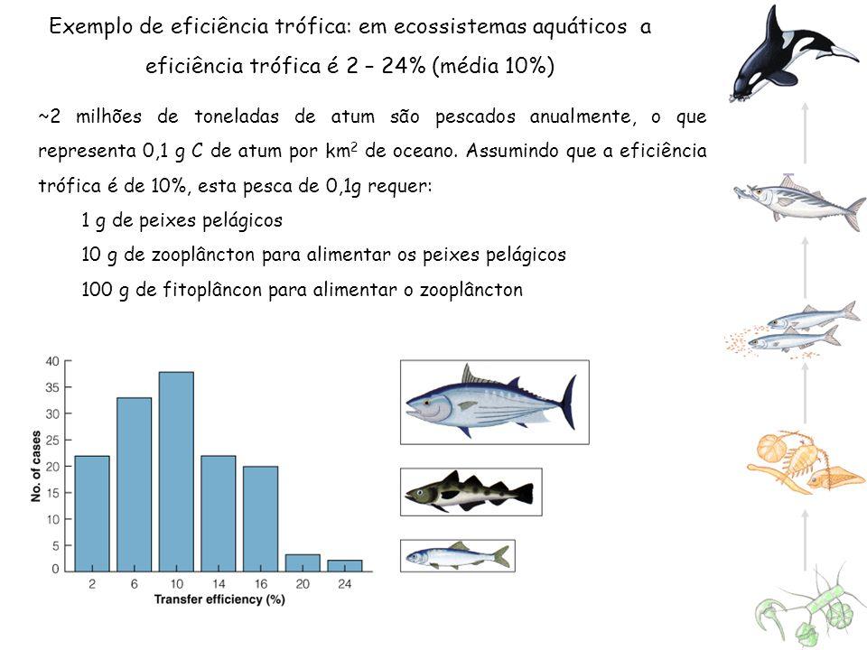 Exemplo de eficiência trófica: em ecossistemas aquáticos a eficiência trófica é 2 – 24% (média 10%)