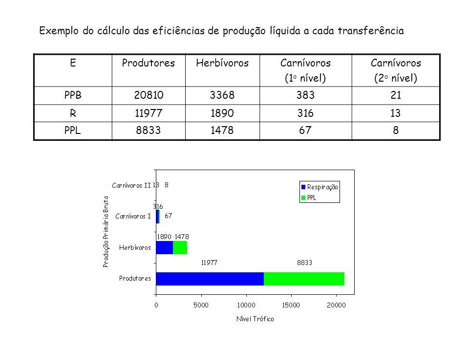 Exemplo do cálculo das eficiências de produção líquida a cada transferência