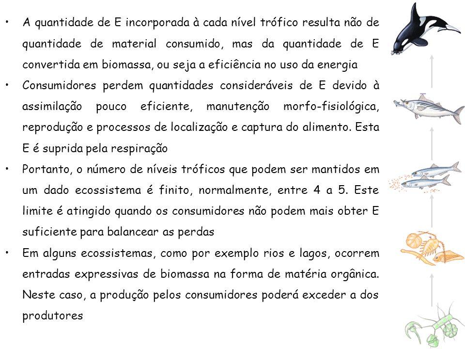 A quantidade de E incorporada à cada nível trófico resulta não de quantidade de material consumido, mas da quantidade de E convertida em biomassa, ou seja a eficiência no uso da energia
