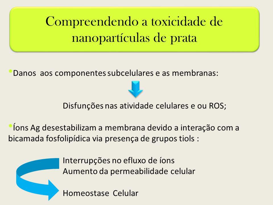 Compreendendo a toxicidade de nanopartículas de prata