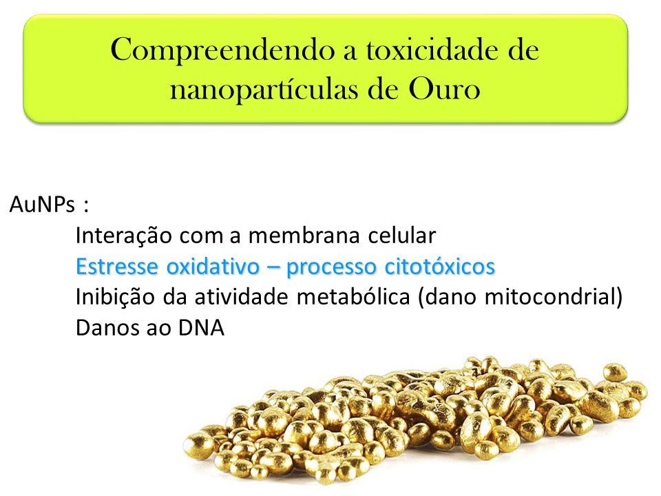 Compreendendo a toxicidade de nanopartículas de Ouro
