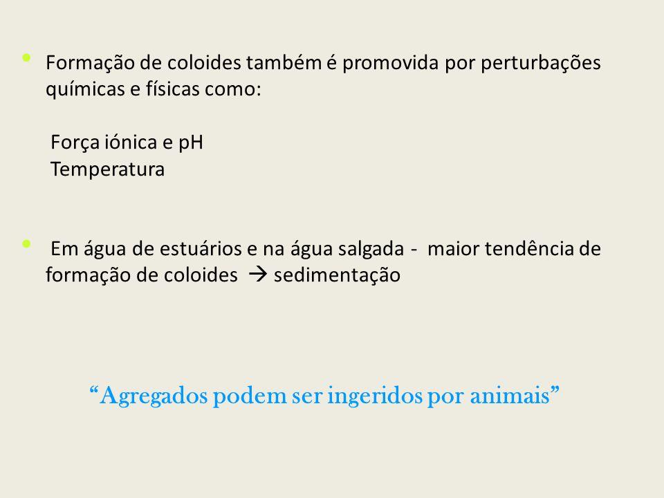 Agregados podem ser ingeridos por animais