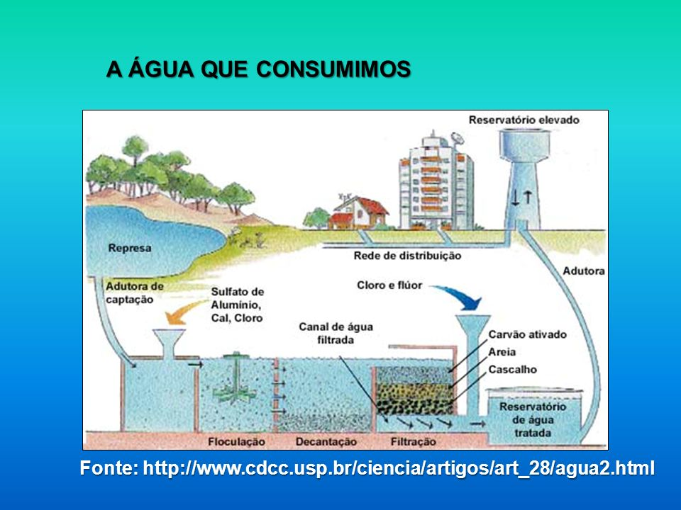 A ÁGUA QUE CONSUMIMOS Fonte: http://www.cdcc.usp.br/ciencia/artigos/art_28/agua2.html