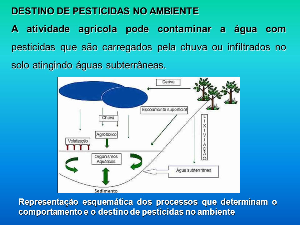 DESTINO DE PESTICIDAS NO AMBIENTE