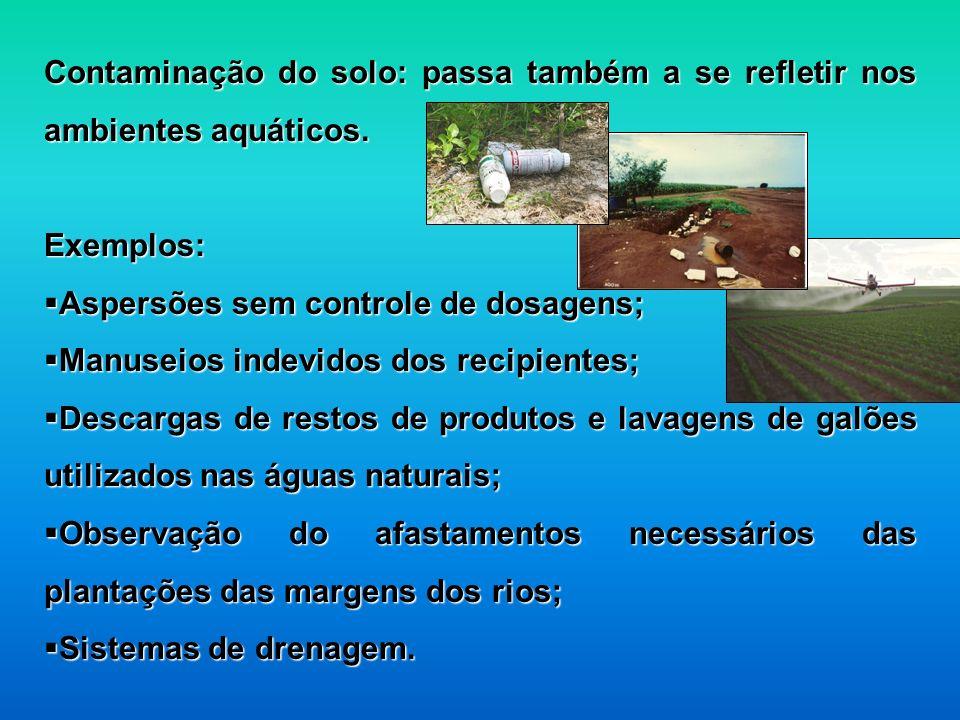 Contaminação do solo: passa também a se refletir nos ambientes aquáticos.