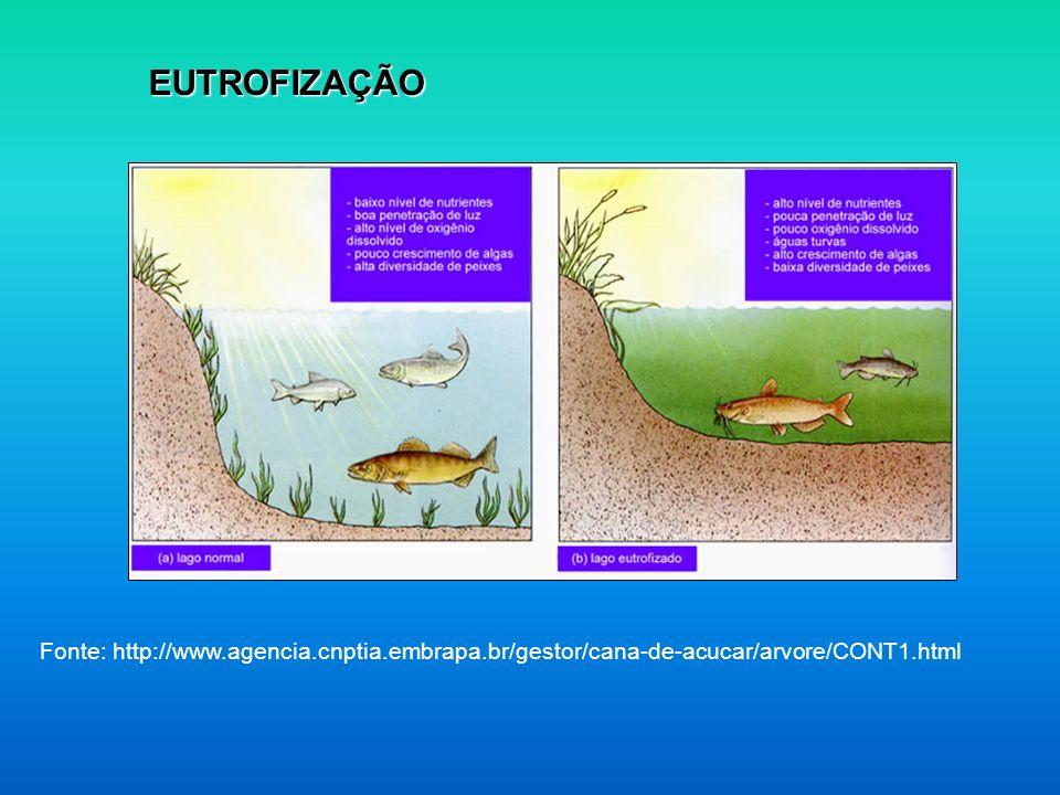 EUTROFIZAÇÃO Fonte: http://www.agencia.cnptia.embrapa.br/gestor/cana-de-acucar/arvore/CONT1.html