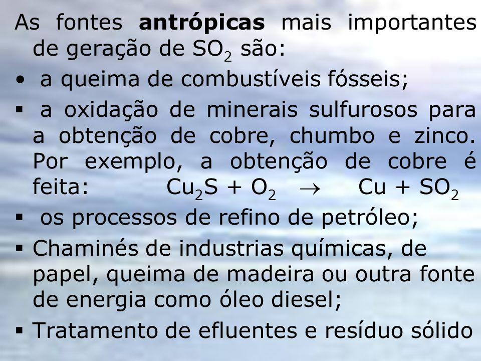 As fontes antrópicas mais importantes de geração de SO2 são: