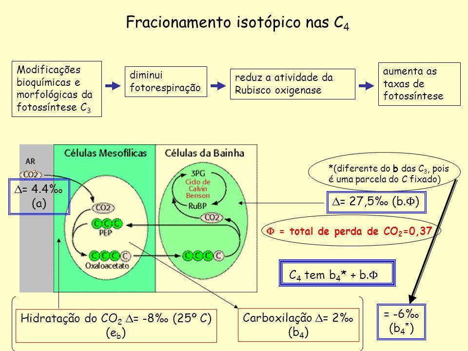Hidratação do CO2 D= -8‰ (25º C)