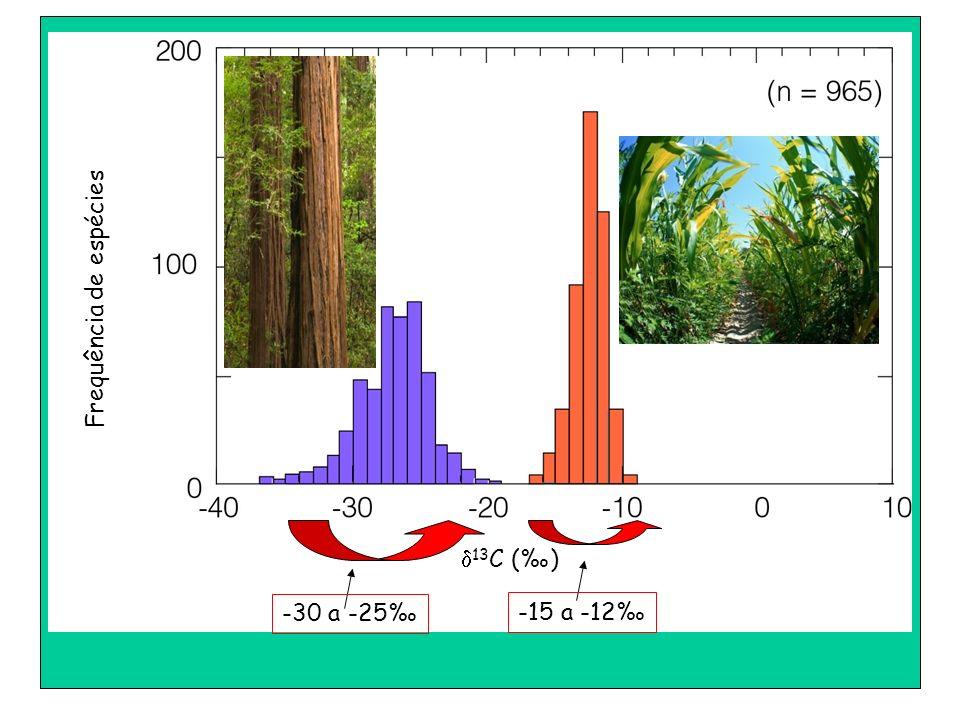 d13C (‰) Frequência de espécies -30 a -25‰ -15 a -12‰