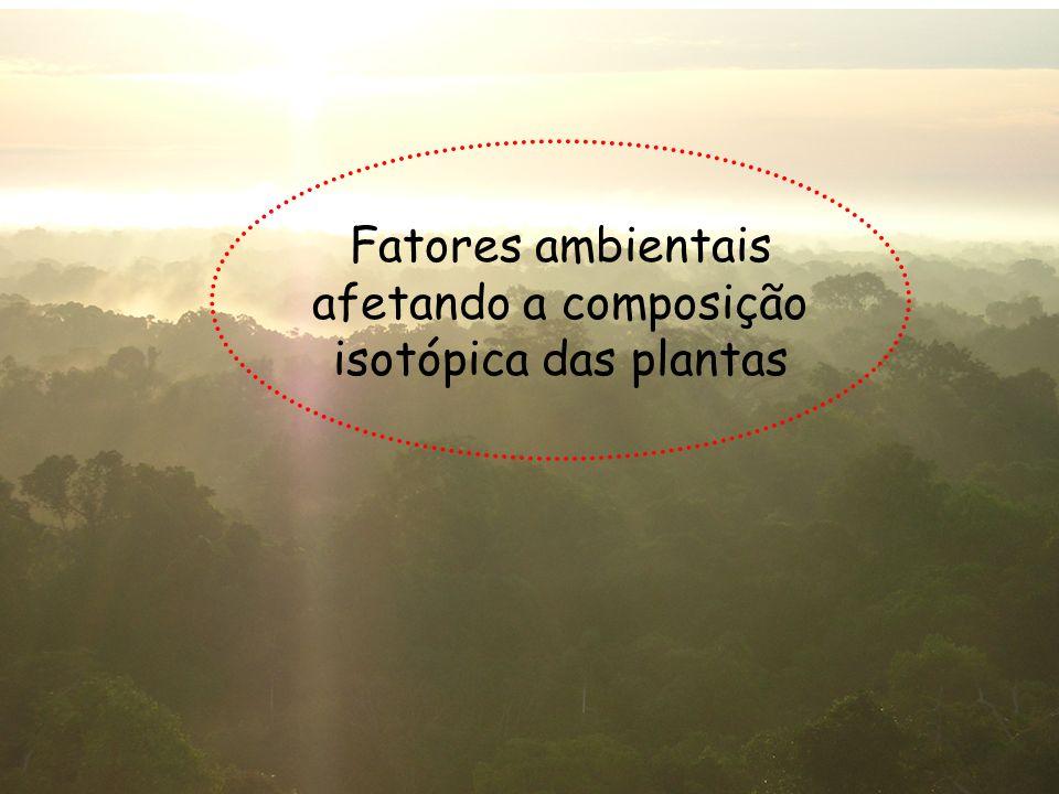 Fatores ambientais afetando a composição isotópica das plantas