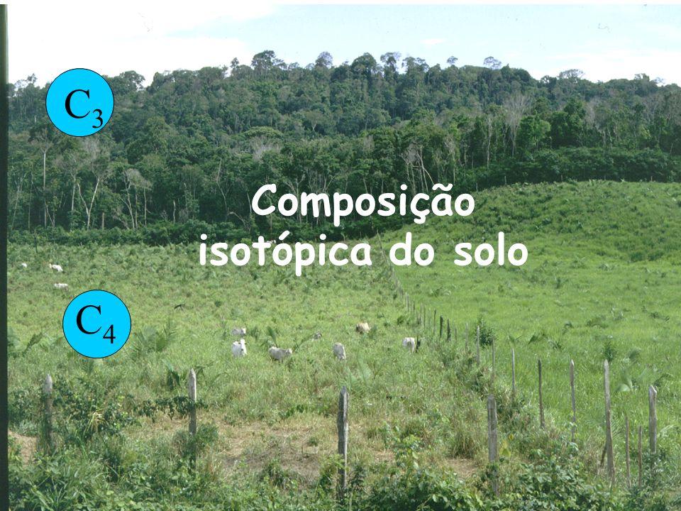 Composição isotópica do solo