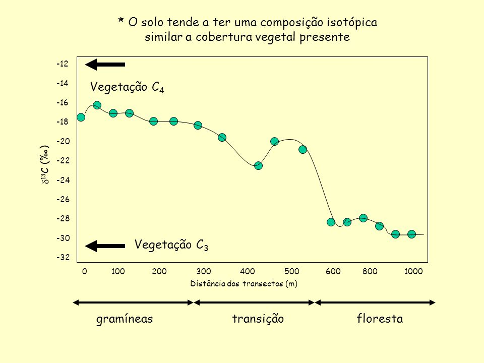 gramíneas transição floresta