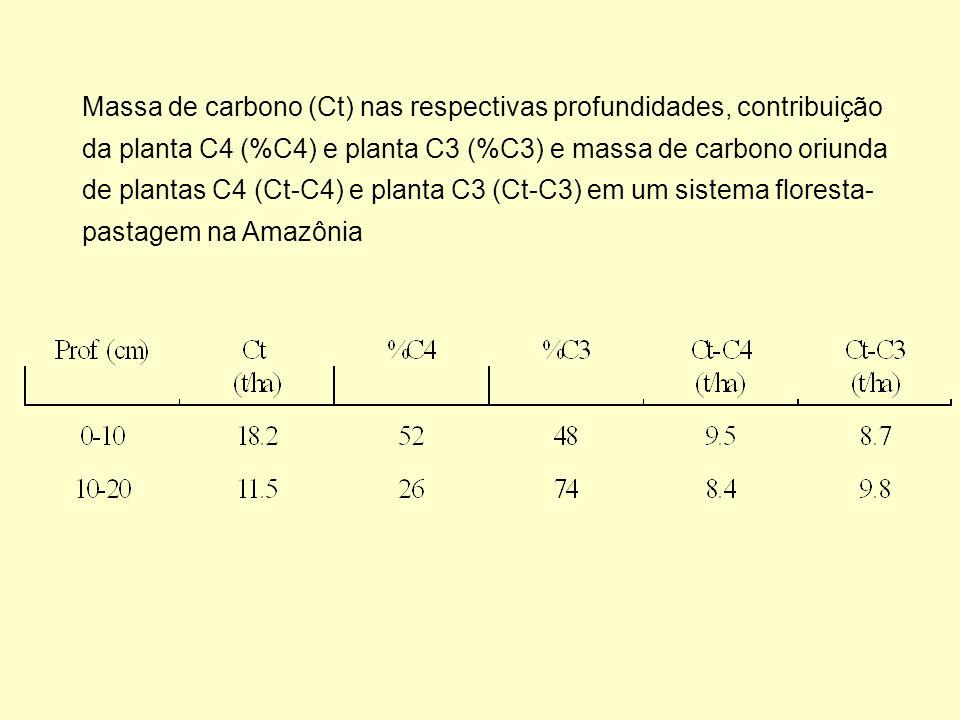 Massa de carbono (Ct) nas respectivas profundidades, contribuição da planta C4 (%C4) e planta C3 (%C3) e massa de carbono oriunda de plantas C4 (Ct-C4) e planta C3 (Ct-C3) em um sistema floresta-pastagem na Amazônia