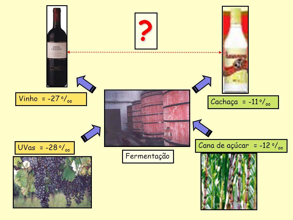 Vinho = -27 o/oo Cachaça = -11 o/oo Cana de açúcar = -12 o/oo