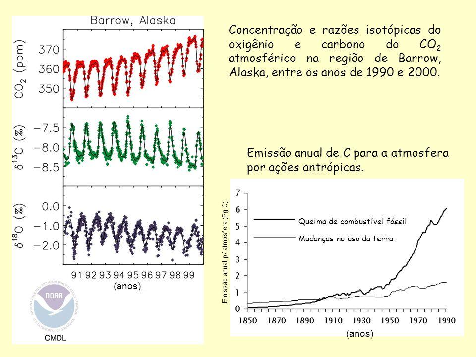 Emissão anual de C para a atmosfera por ações antrópicas.