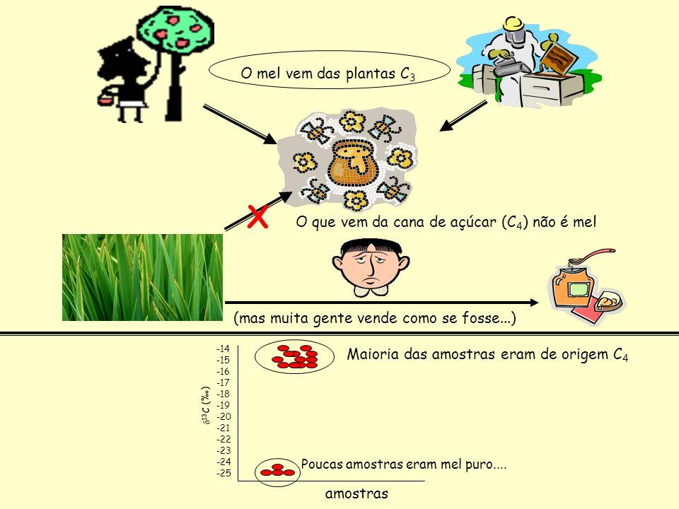 X O mel vem das plantas C3 O que vem da cana de açúcar (C4) não é mel