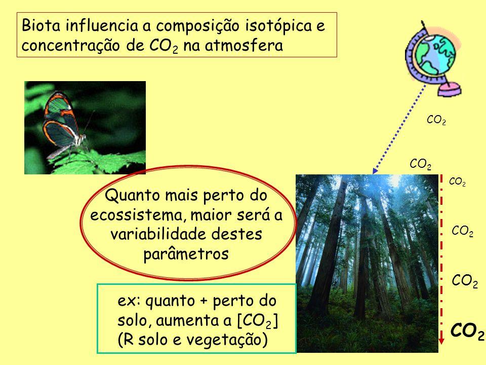 Biota influencia a composição isotópica e