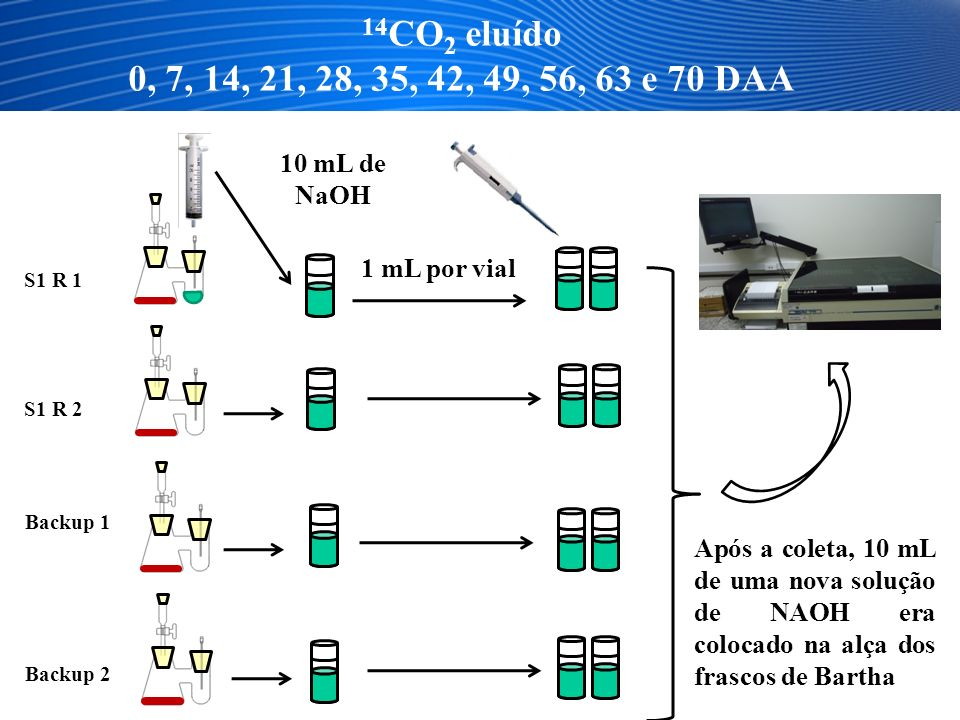 14CO2 eluído 0, 7, 14, 21, 28, 35, 42, 49, 56, 63 e 70 DAA. 10 mL de NaOH. 1 mL por vial. S1 R 1.