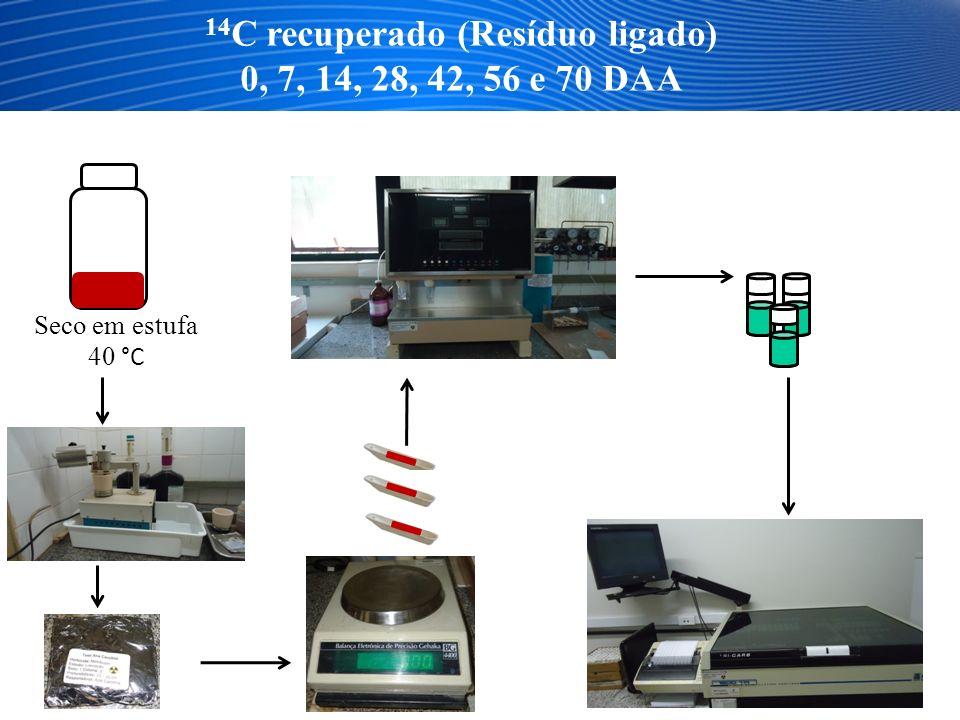 14C recuperado (Resíduo ligado)