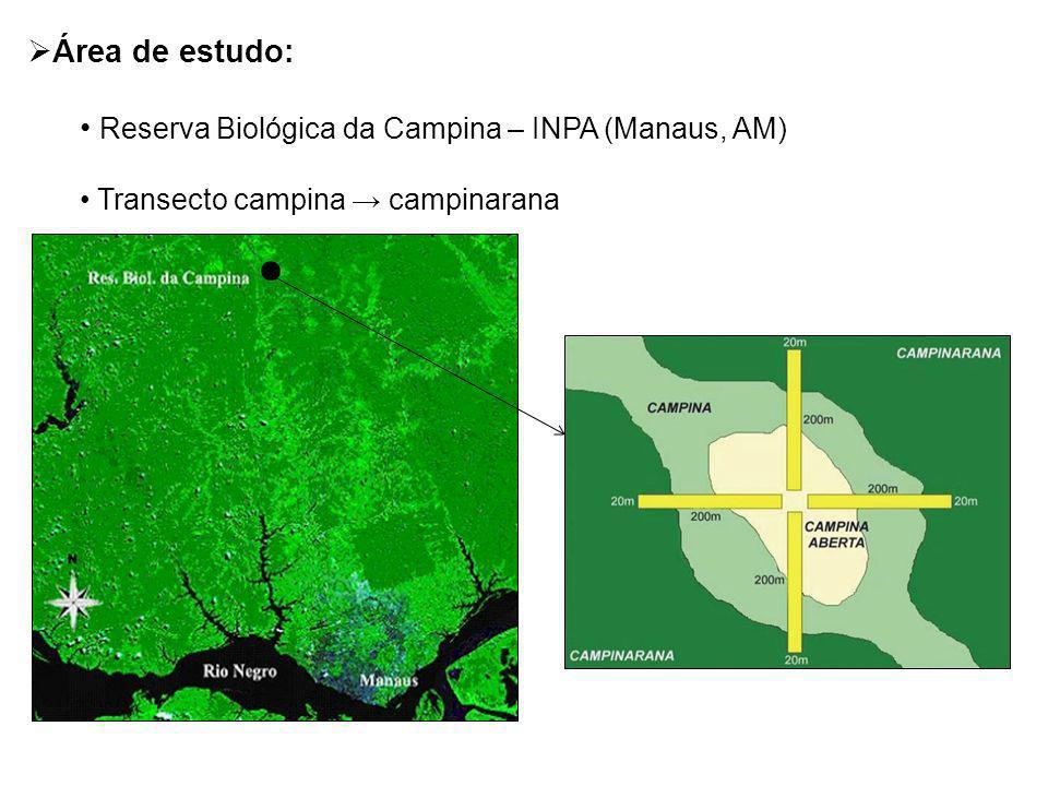 Reserva Biológica da Campina – INPA (Manaus, AM)