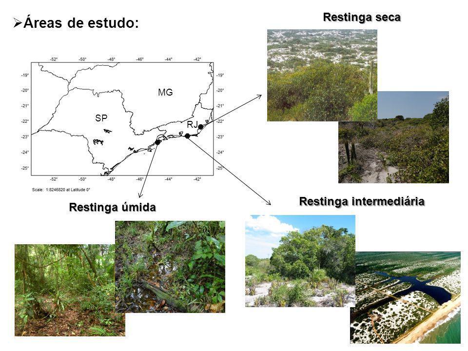 Áreas de estudo: Restinga seca Restinga intermediária Restinga úmida