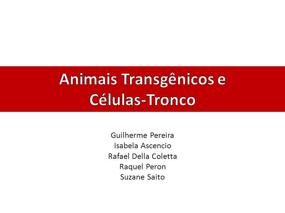 Animais Transgênicos e Células-Tronco
