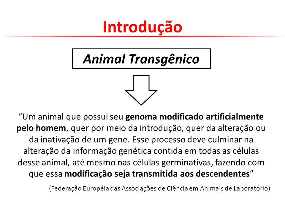 Introdução Animal Transgênico
