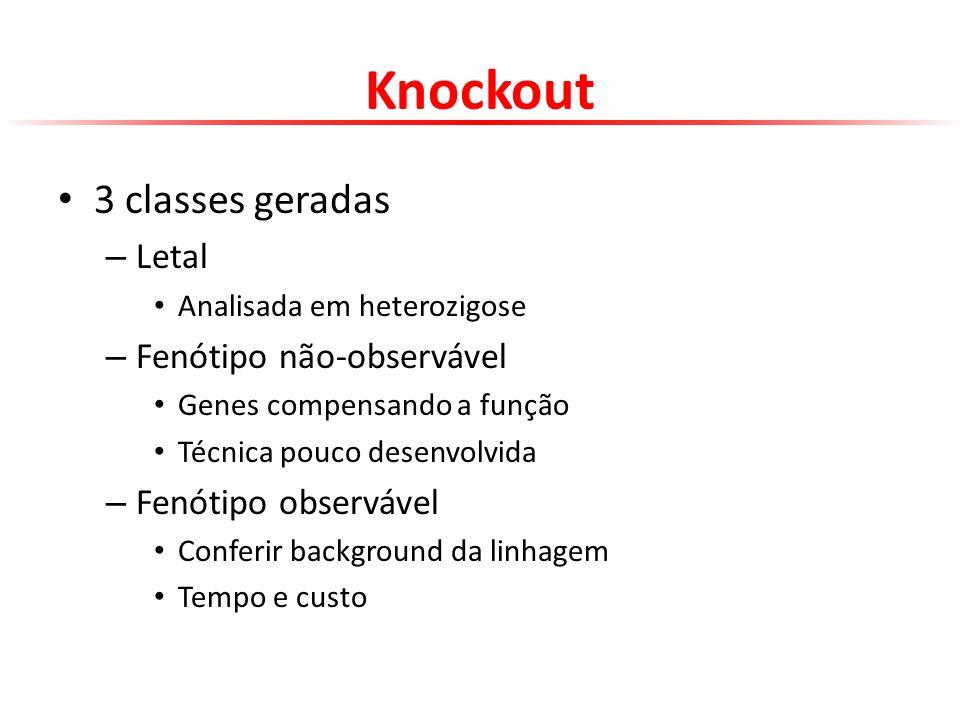 Knockout 3 classes geradas Letal Fenótipo não-observável