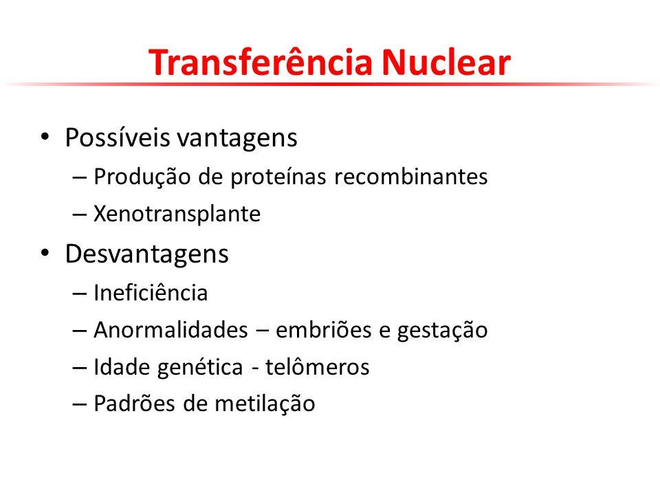 Transferência Nuclear