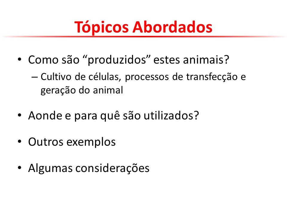 Tópicos Abordados Como são produzidos estes animais