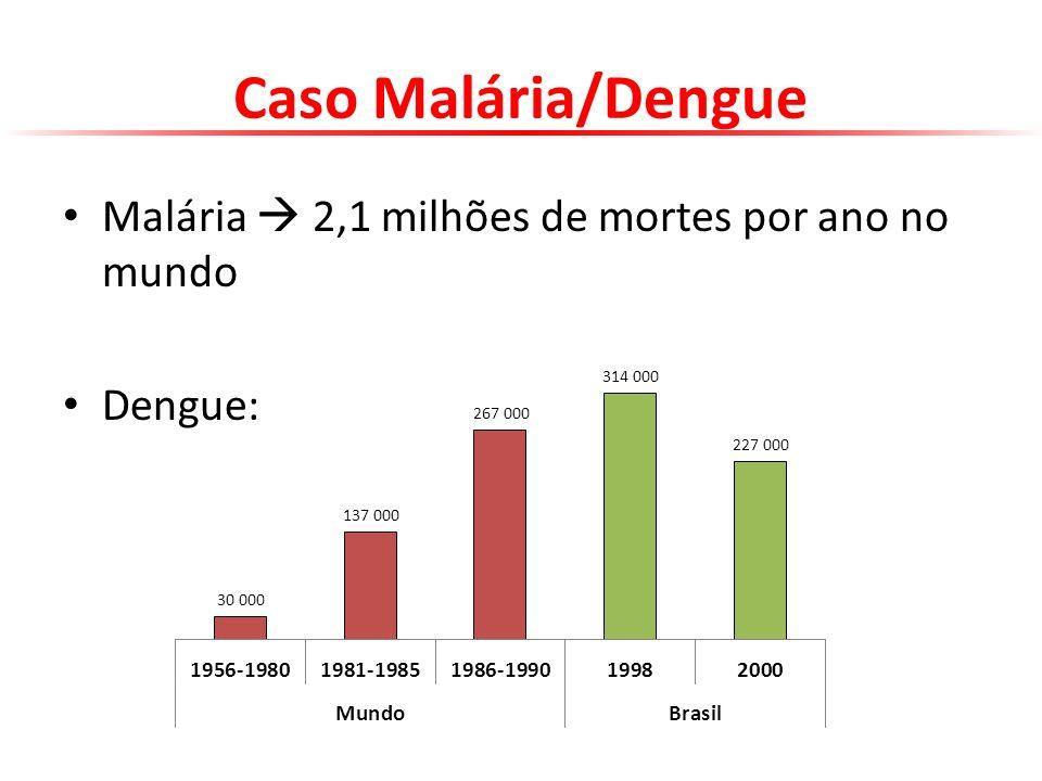 Caso Malária/Dengue Malária  2,1 milhões de mortes por ano no mundo