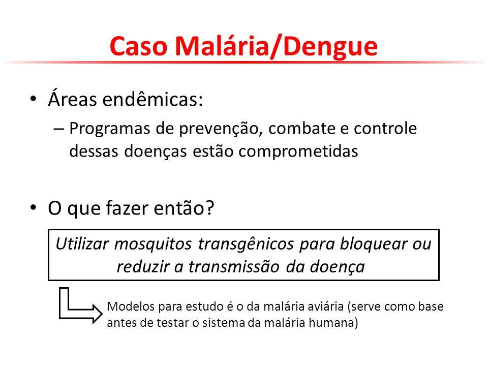 Caso Malária/Dengue Áreas endêmicas: O que fazer então