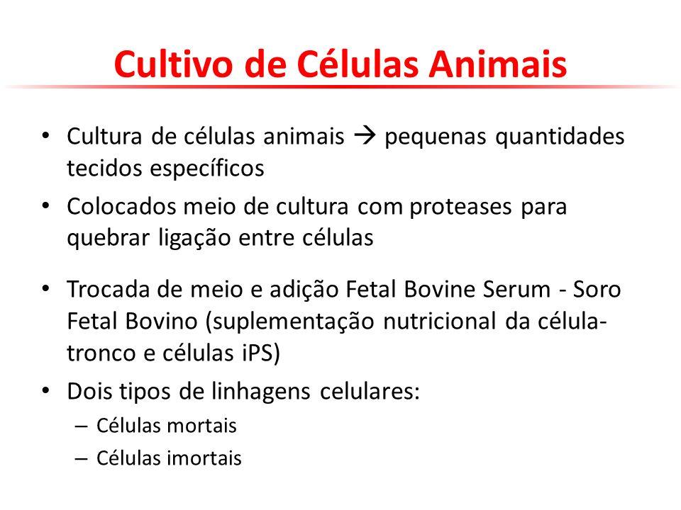 Cultivo de Células Animais