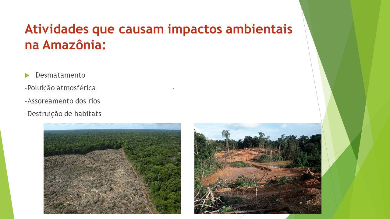 Atividades que causam impactos ambientais na Amazônia: