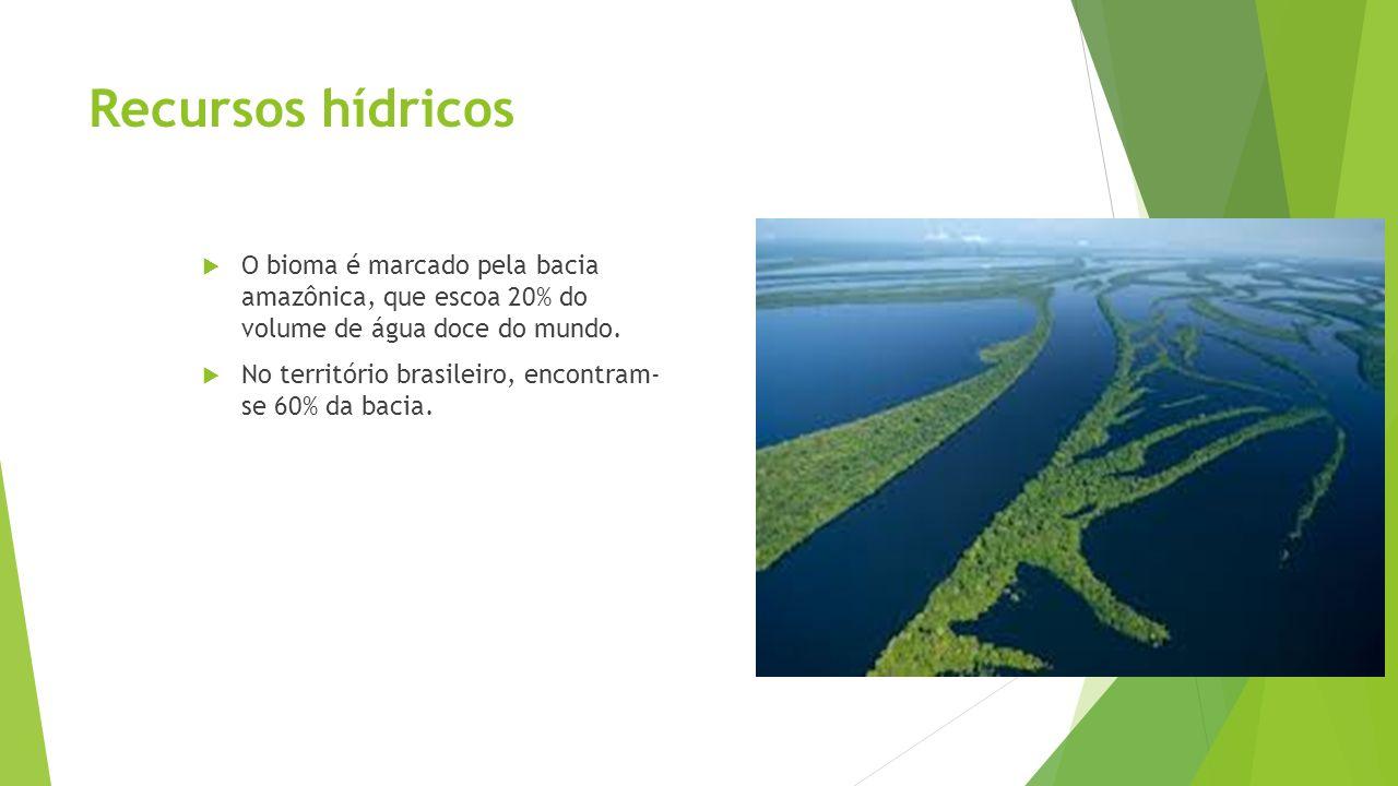 Recursos hídricos O bioma é marcado pela bacia amazônica, que escoa 20% do volume de água doce do mundo.