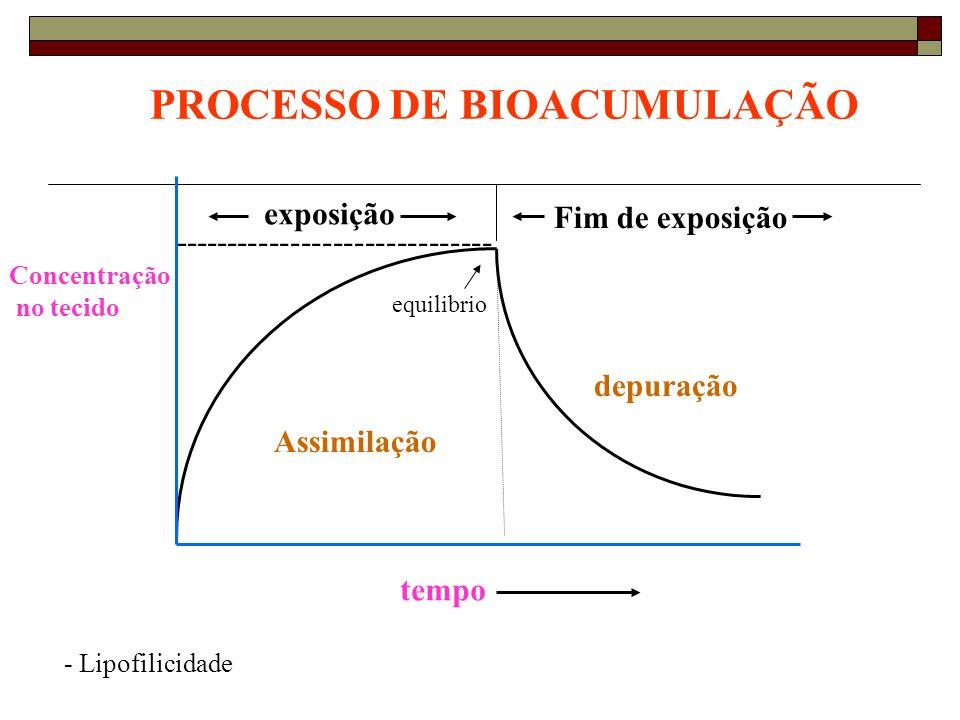 PROCESSO DE BIOACUMULAÇÃO