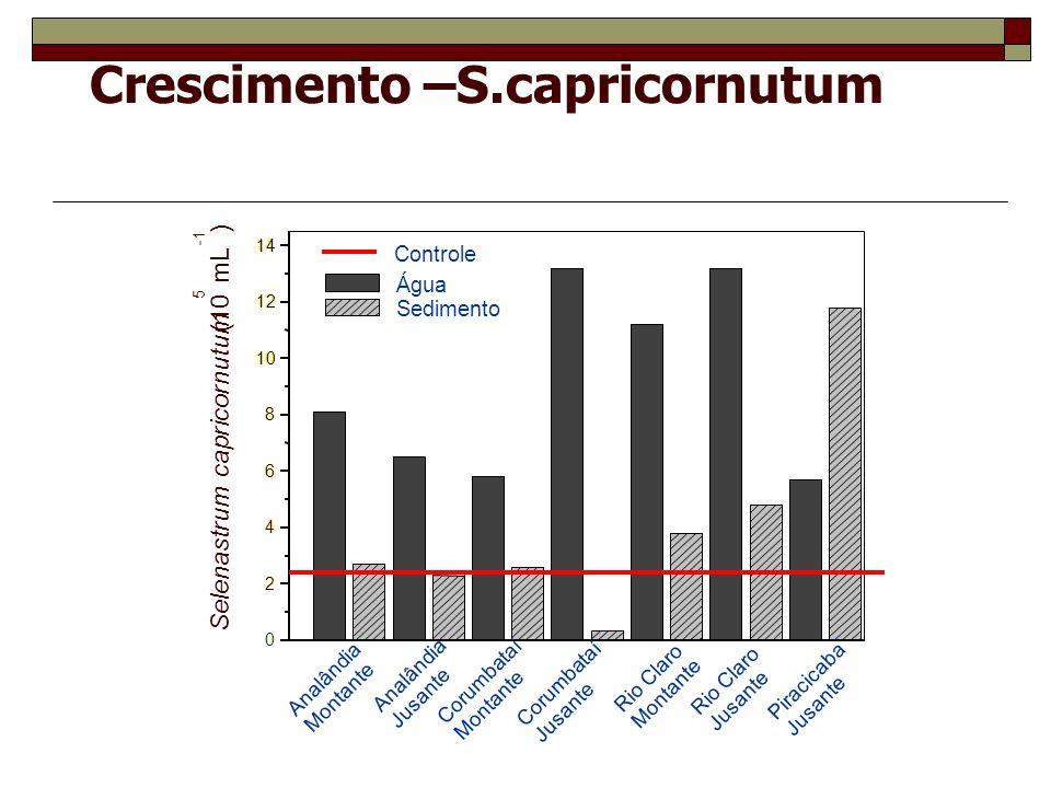 Crescimento –S.capricornutum