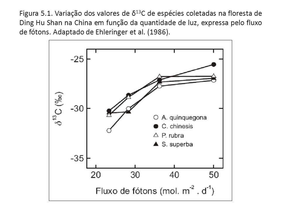 Figura 5.1.