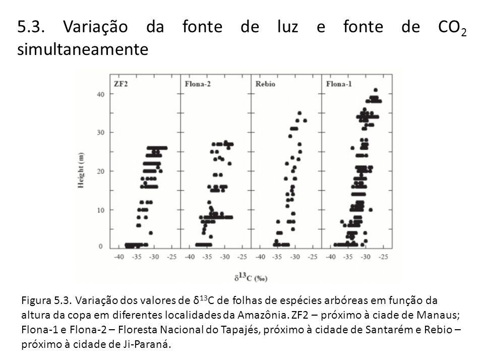 5.3. Variação da fonte de luz e fonte de CO2 simultaneamente