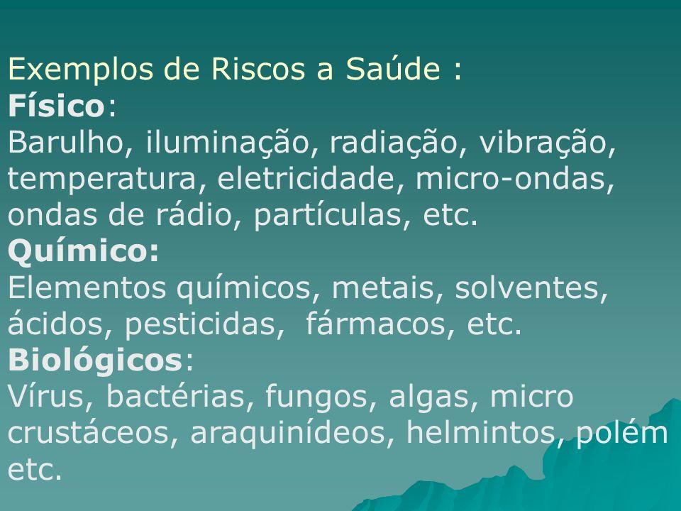 Exemplos de Riscos a Saúde :