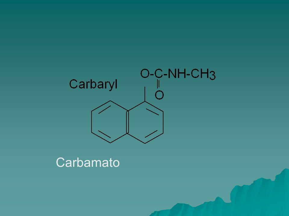 Carbamato