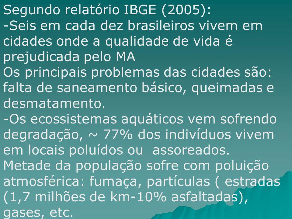Segundo relatório IBGE (2005):
