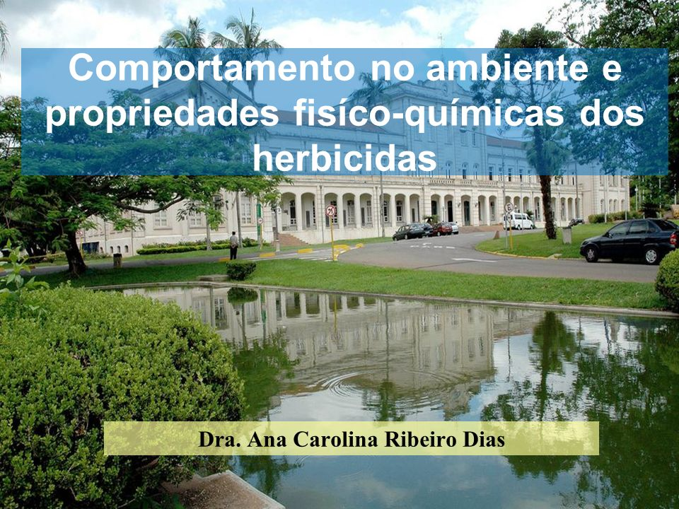 Dra. Ana Carolina Ribeiro Dias