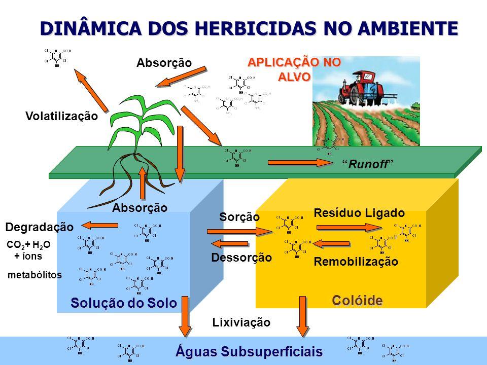 DINÂMICA DOS HERBICIDAS NO AMBIENTE