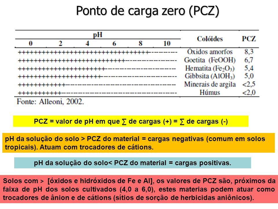 Ponto de carga zero (PCZ)