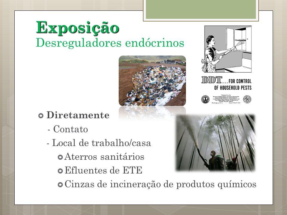 Exposição Desreguladores endócrinos Diretamente - Contato