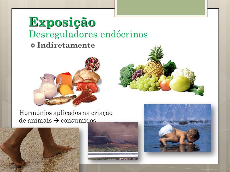 Exposição Desreguladores endócrinos Indiretamente