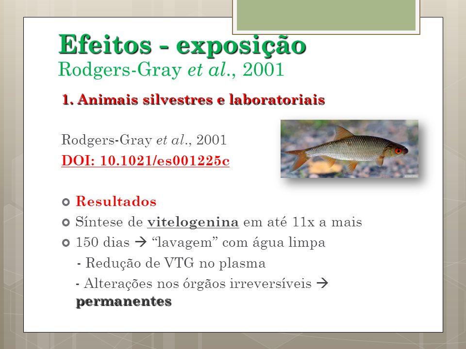 Efeitos - exposição Rodgers-Gray et al., 2001