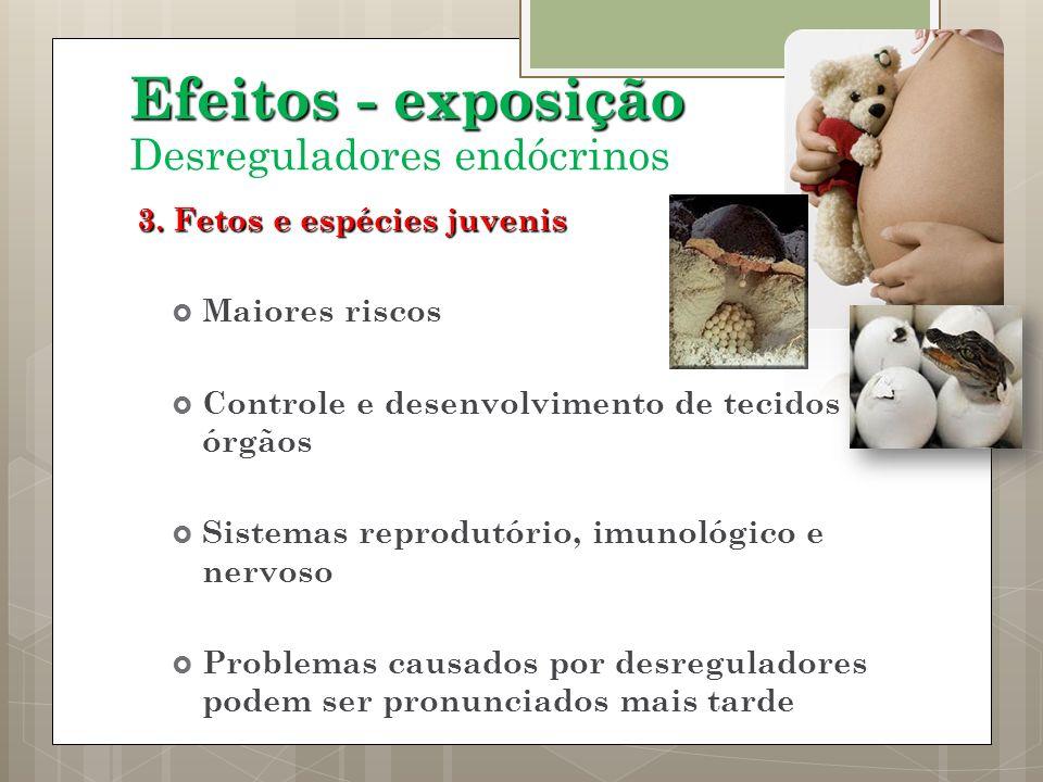 Efeitos - exposição Desreguladores endócrinos